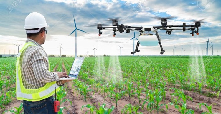 Role of Technology In Developing a Flourishing Agriculture Sector In Africa